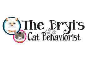 bryis cat behaviour 5